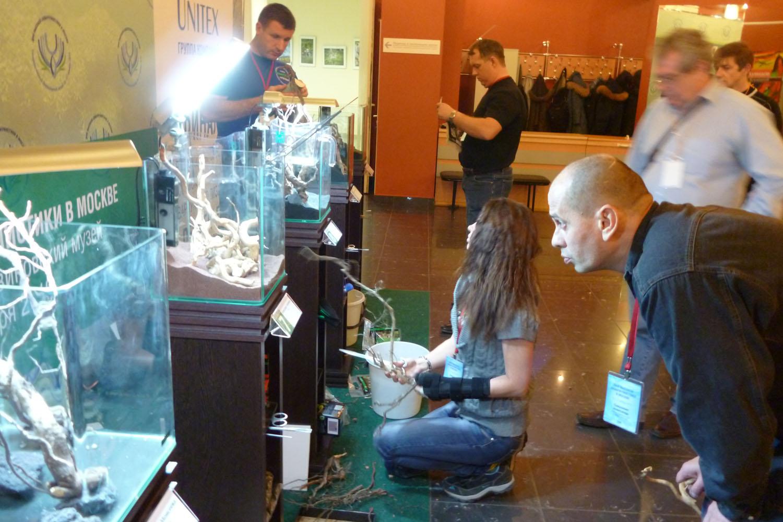 Дни высокой аквариумистики в Дарвиновском музее